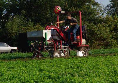 Verschoor Horticulture (18)