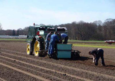 Verschoor Horticulture (6)