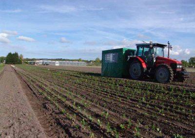 Verschoor Horticulture (7)